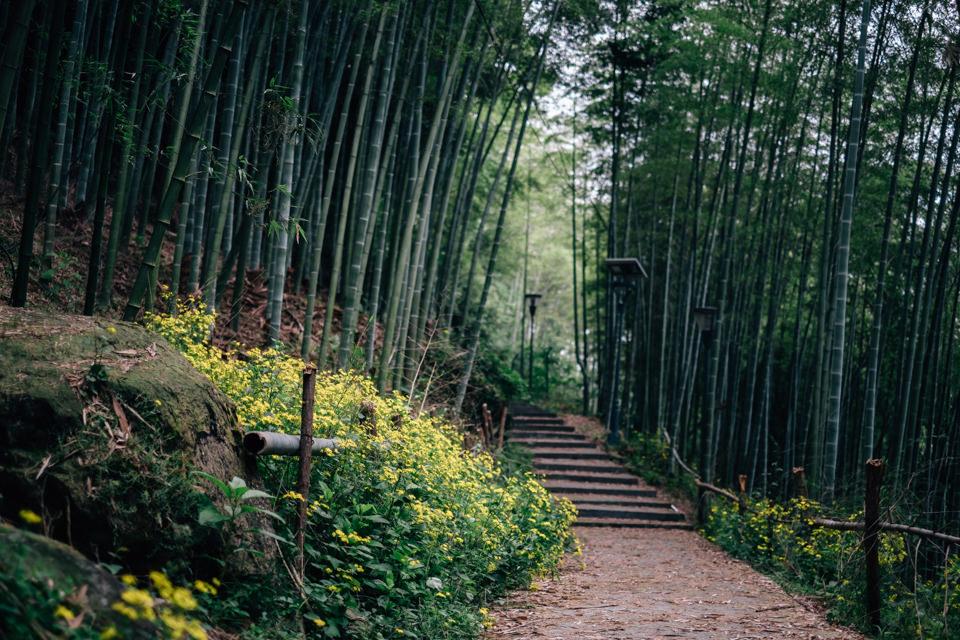 Kínai utazás |Seres Zsolt fotós 003