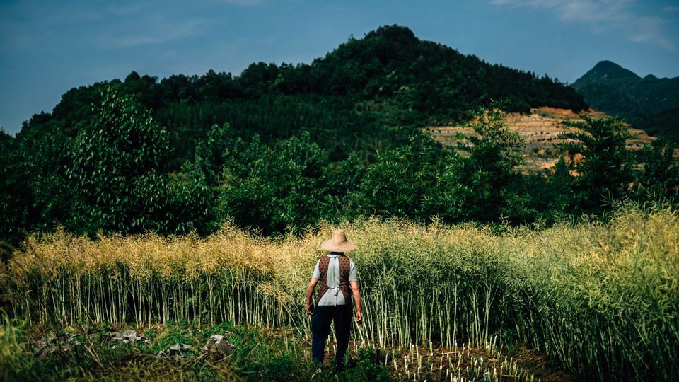 Kínai utazás |Seres Zsolt fotós 006