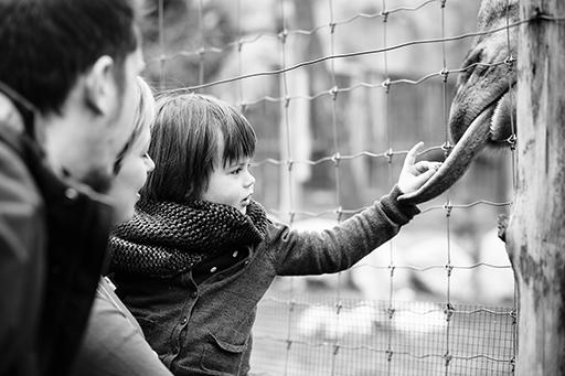 Család fotózás Budapest Sári Seres Zsolt fotós