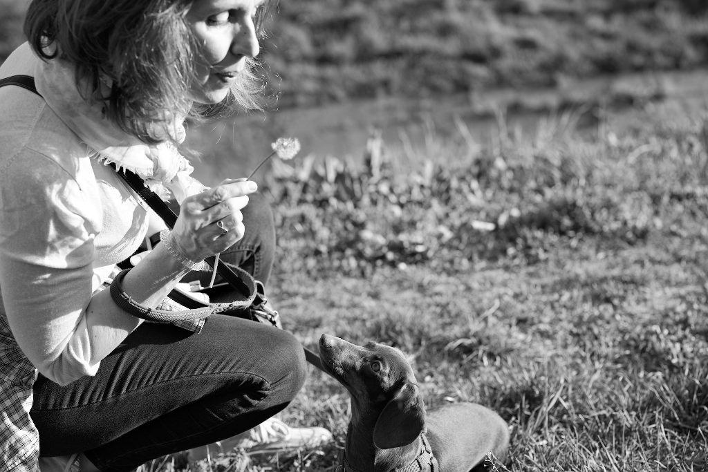Kutyafotózás LULU 009 | Seres Zsolt fotós