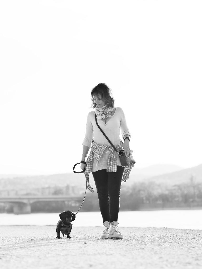 Kutyafotózás LULU 014 | Seres Zsolt fotós