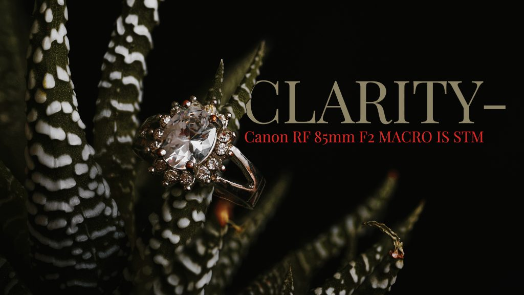 Canon RF 85mm F2 IS STM macro review cover